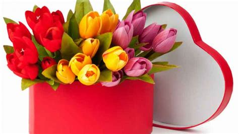 regalo fiori consegna fiori una ottima idea regalo