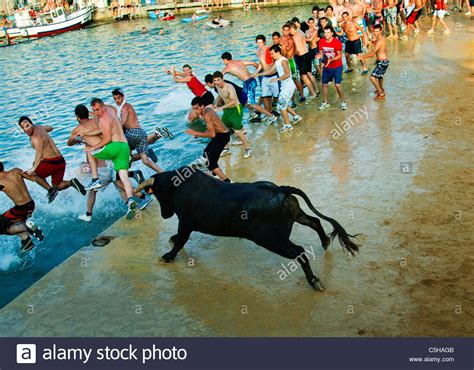 The Bull From The Sea bulls to the sea stock photos bulls to the sea stock