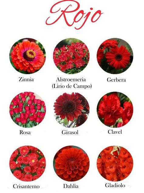 banco de imagenes rosas rojas con nombres de personas y mensajes para las 25 mejores ideas sobre arreglos de flores blancas en