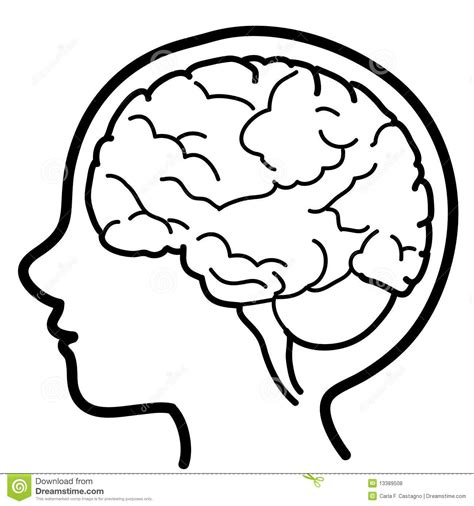 brain clipart mind clipart brain outline pencil and in color mind