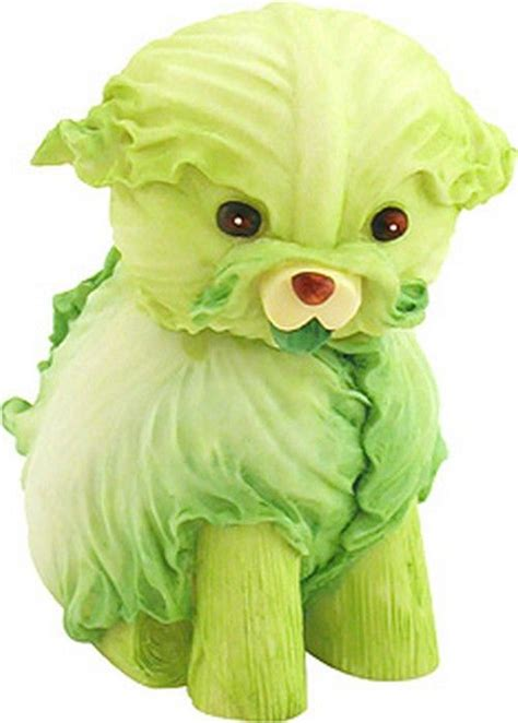 can dogs lettuce cabbages the o jays and chickpeas on