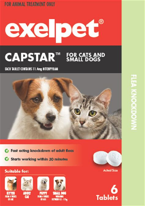 capstar for dogs exelpet capstar for cats and dogs reviews productreview au