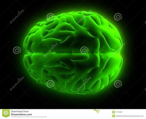 imagenes libres cerebro cerebro 3d