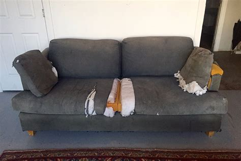 old sofas for charity mac demarco is selling his ratty old couch for charity