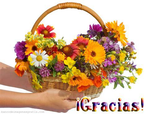 imagenes flores gracias banco de im 225 genes para ver disfrutar y compartir 10