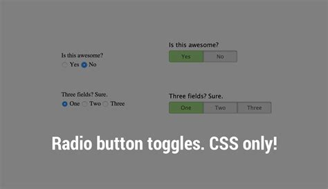 css layout radio buttons radio buttons as toggle buttons with css the stiz media llc