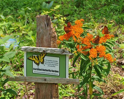 Butterfly Gardens by Naba Butterfly Garden And Habitat Program