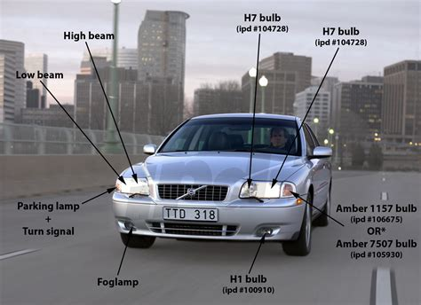 front bulb guide p   halogen headlamps