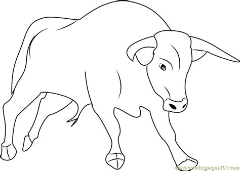 Strong Bull Coloring Page Free Bull Coloring Pages Bull Coloring Pages