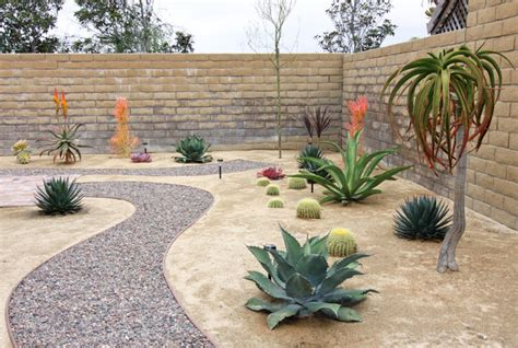 Small Backyard Desert Landscaping Ideas Rock Pathway In Xeroscape Garden Southwestern Landscape Orange County By Shelley Gardea