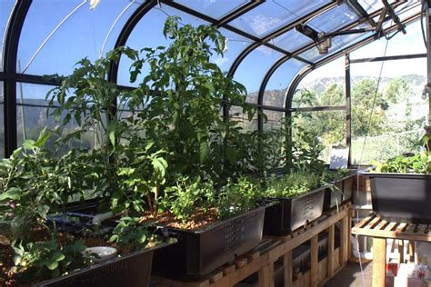 commercial aquaponics the efficient use of resources