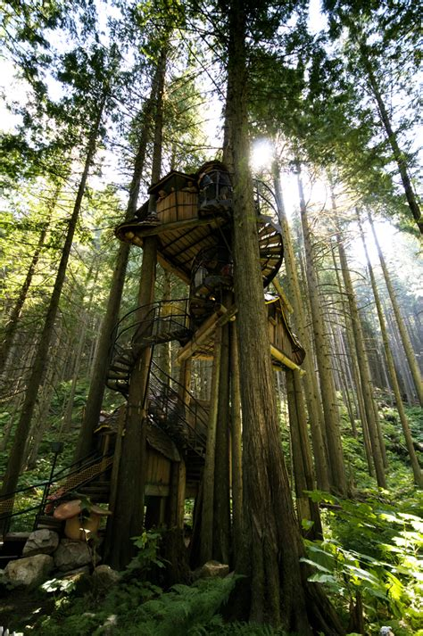 beautiful treehouses from around the world photo gallery