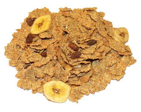 carbohydrates fiber carbohydrates with fiber ketogenicdietpdf