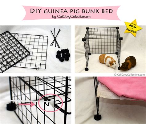 how to make a guinea pig bed cali cavy collective a blog about all things guinea pig