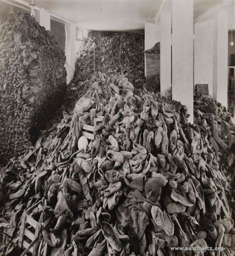 world war ii auschwitz a history from beginning to end books piles of personal belongings left after mass extermination