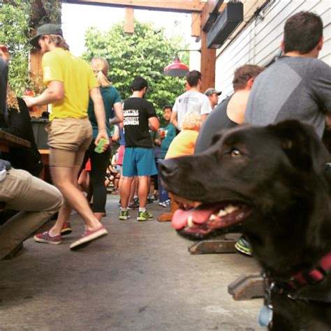 top bars in portland best bars in portland with outdoor seating portland hipster