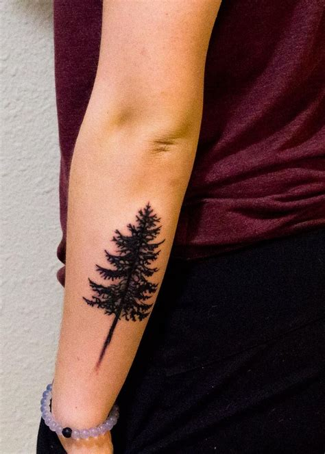 spruce tree tattoo best 25 tree silhouette ideas on tree