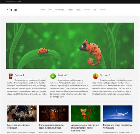 Wordpress Theme Orion Free | 13 best free premium wordpress themes thematosoup