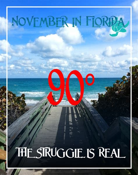 Florida Winter Meme - winter in fl the struggle is real waterfront