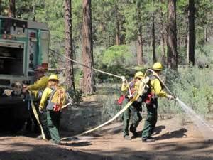 lassen national forest seeking wildland firefighters for