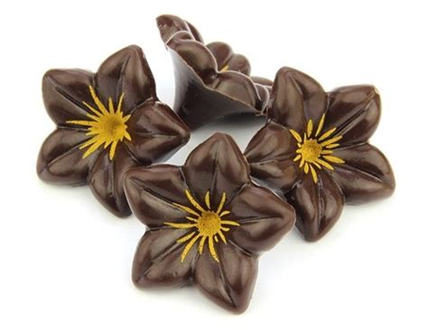flowers and chocolate chocolate flowers chocolate trading co