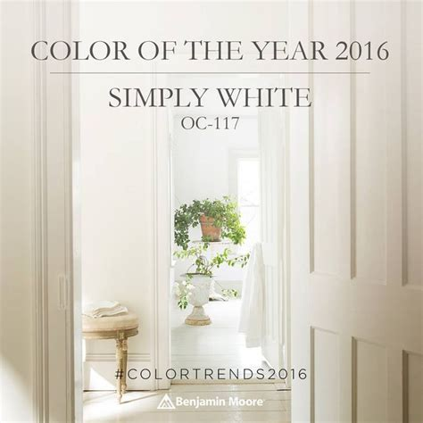 colour review benjamin moore simply white sherwin williams black dog design blog