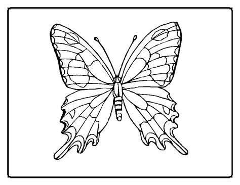 Butterfly Coloring Pages Moms Who Think Butterfly Color Page