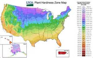 real world winter gardening tips from your growing zone