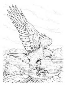 eagle coloring pages free printable bald eagle coloring pages for