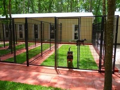kennel design moontechk9