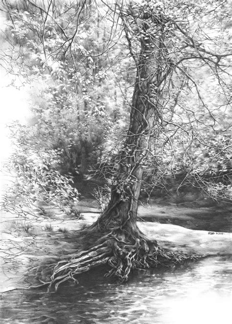 tree original fairytale tree original drawing by katarzyna kmiecik