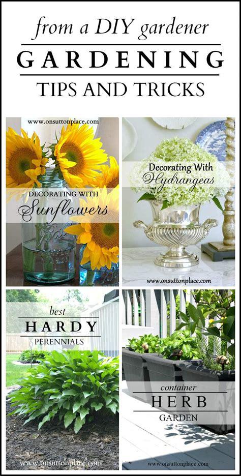 Gardening Tips And Tricks gardening tips and tricks from a diy gardener