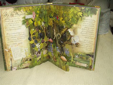 How To Search Up How To Find Flower Fairies Pop Up Book Book Covers