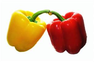 fresh sweet pepper free stock photo public domain pictures