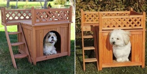 dog house with deck every pooch needs a dog house with private rooftop deck