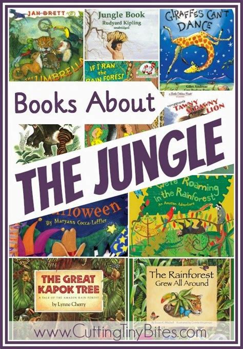themes choices in learning and books 25 best ideas about preschool jungle on