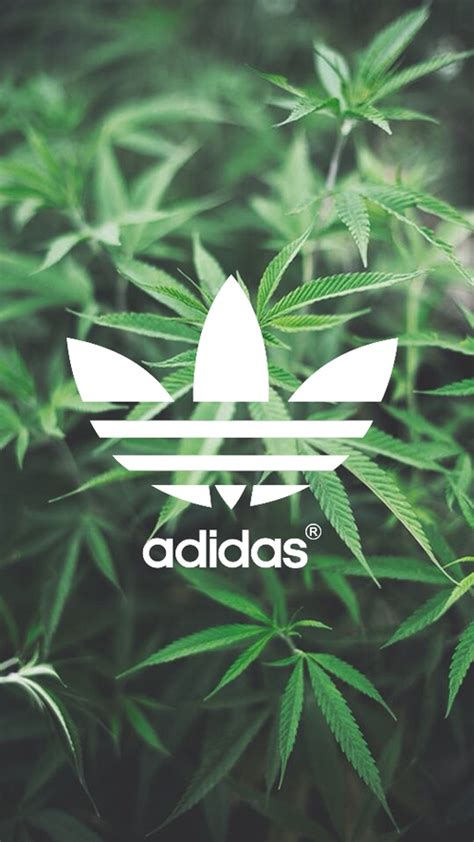 images about adidas wallpaper on adidas 500