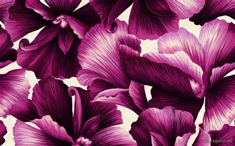 hd flower pattern background hd flower illustrations design background wallpaper hd