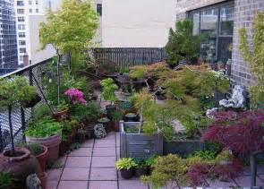 terrace garden archives hydroponics equipment co