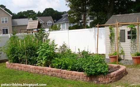 13 Easiest Ways To Build A Raised Vegetable Bed In Your Building Vegetable Garden