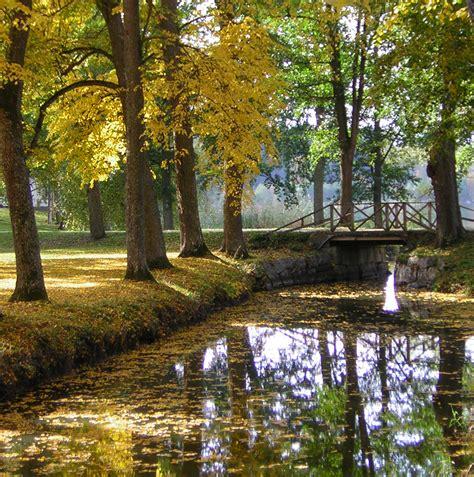 imagenes otoño en mi corazon el oto 241 o una sinfon 237 a de colores 30 don gerardo de suecia