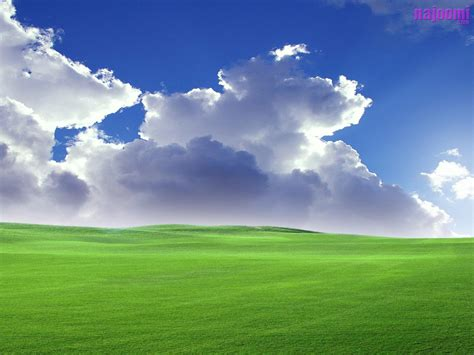 Wallpaper 3d Xp | free 3d windows xp wallpapers vista nature animals fun