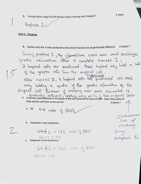 printable mitosis quiz unit 1 genetic processes test