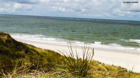 sylt island the island of sylt global safari