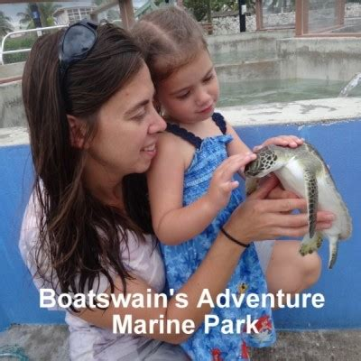 boatswain s adventure marine park - Boatswain S Adventure Marine Park