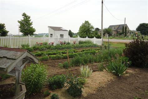 amish indiana  amish vegetable garden