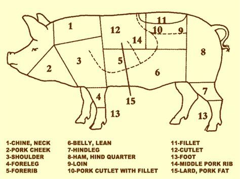 butcher diagram pig venessa cooks piggy