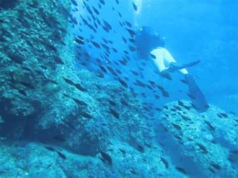 dive italia scuba diving in sardinia italy med sea