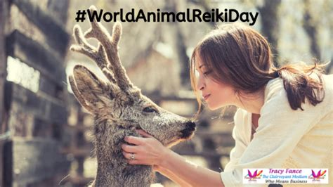 world animal reiki day tracy fance