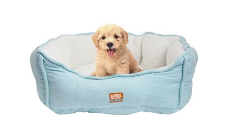 animal planet dog bed animal planet micro suede pet bed groupon